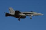 350JMさんが、厚木飛行場で撮影したアメリカ海兵隊 F/A-18C Hornetの航空フォト(写真)