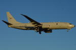 350JMさんが、厚木飛行場で撮影したオーストラリア空軍 P-8A (737-8FV)の航空フォト(写真)