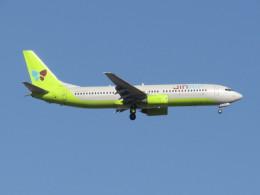 commet7575さんが、福岡空港で撮影したジンエアー 737-86Nの航空フォト(飛行機 写真・画像)