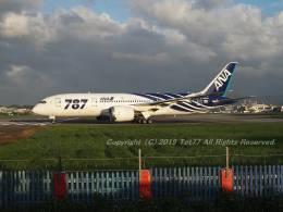 tet77さんが、台北松山空港で撮影した全日空 787-8 Dreamlinerの航空フォト(飛行機 写真・画像)