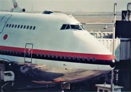 エルさんが、羽田空港で撮影した日本航空 747-146B/SR/SUDの航空フォト(飛行機 写真・画像)