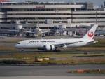 蒲田っ子さんが、羽田空港で撮影した日本航空 787-8 Dreamlinerの航空フォト(写真)