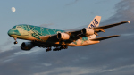 saoya_saodakeさんが、成田国際空港で撮影した全日空 A380-841の航空フォト(写真)