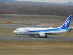 まひろさんが、新千歳空港で撮影した全日空 737-881の航空フォト(飛行機 写真・画像)