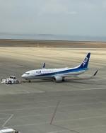 まひろさんが、中部国際空港で撮影した全日空 737-881の航空フォト(写真)