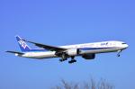 Co-pilootjeさんが、成田国際空港で撮影した全日空 777-381/ERの航空フォト(飛行機 写真・画像)