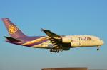 Co-pilootjeさんが、成田国際空港で撮影したタイ国際航空 A380-841の航空フォト(写真)
