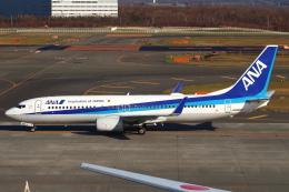 セブンさんが、新千歳空港で撮影した全日空 737-881の航空フォト(飛行機 写真・画像)
