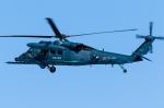 B.K JEONGさんが、名古屋飛行場で撮影した航空自衛隊 UH-60J/JAの航空フォト(写真)