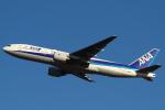 セブンさんが、新千歳空港で撮影した全日空 777-281/ERの航空フォト(飛行機 写真・画像)