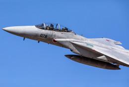 ちょこんささんが、岐阜基地で撮影した航空自衛隊 F-15DJ Eagleの航空フォト(写真)