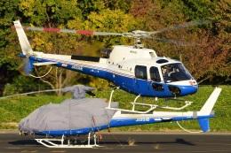 =JAかみんD=さんが、調布飛行場で撮影した昭和リース AS350B3 Ecureuilの航空フォト(飛行機 写真・画像)