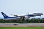 森の美玲Pさんが、函館空港で撮影した全日空 787-9の航空フォト(写真)