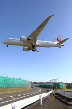 トリトンブルーSHIROさんが、成田国際空港で撮影した日本航空 787-8 Dreamlinerの航空フォト(写真)