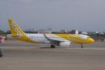 かずまっくすさんが、台湾桃園国際空港で撮影したスクート A320-232の航空フォト(写真)