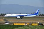 mamemashinさんが、佐賀空港で撮影した全日空 A321-272Nの航空フォト(写真)