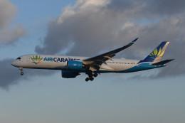 いもや太郎さんが、パリ オルリー空港で撮影したエア・カライベス A350-941の航空フォト(飛行機 写真・画像)