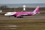 もぐ3さんが、新潟空港で撮影したバニラエア A320-214の航空フォト(写真)