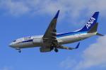 rokko2000さんが、那覇空港で撮影した全日空 737-781の航空フォト(写真)