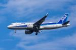ぱん_くまさんが、成田国際空港で撮影した全日空 A320-271Nの航空フォト(写真)