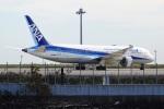レドームさんが、羽田空港で撮影した全日空 787-8 Dreamlinerの航空フォト(写真)