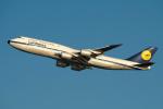 りおんさんが、羽田空港で撮影したルフトハンザドイツ航空 747-830の航空フォト(写真)