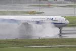 Hiro-hiroさんが、羽田空港で撮影した全日空 767-381の航空フォト(写真)
