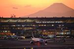 だだちゃ豆さんが、羽田空港で撮影した全日空 787-8 Dreamlinerの航空フォト(写真)