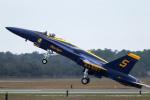 AkiChup0nさんが、ペンサコーラ海軍航空ステーションで撮影したアメリカ海軍 F/A-18C Hornetの航空フォト(写真)