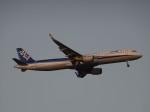 Blue605Aさんが、福岡空港で撮影した全日空 A321-211の航空フォト(写真)