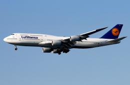 航空フォト:D-ABYO ルフトハンザドイツ航空 747-8