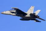 take_2014さんが、横田基地で撮影したアメリカ海軍 EA-18G Growlerの航空フォト(飛行機 写真・画像)