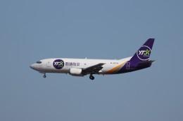 KAZFLYERさんが、成田国際空港で撮影したYTOカーゴ・エアラインズ 737-37Kの航空フォト(飛行機 写真・画像)