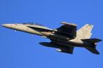 take_2014さんが、横田基地で撮影したアメリカ海軍 F/A-18E Super Hornetの航空フォト(飛行機 写真・画像)