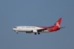 KAZFLYERさんが、成田国際空港で撮影した深圳航空 737-86Nの航空フォト(飛行機 写真・画像)