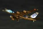 木人さんが、成田国際空港で撮影した全日空 A380-841の航空フォト(写真)