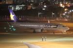 flyflygoさんが、福岡空港で撮影したスカイマーク 737-8HXの航空フォト(写真)