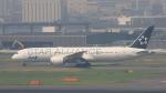 Cassiopeia737さんが、羽田空港で撮影した全日空 787-9の航空フォト(写真)