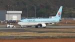 撮り撮り人さんが、岡山空港で撮影した大韓航空 737-9B5の航空フォト(写真)