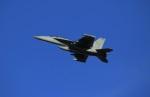 メンチカツさんが、横田基地で撮影したアメリカ海軍 EA-18G Growlerの航空フォト(写真)