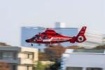 NCT310さんが、立川飛行場で撮影した東京消防庁航空隊 AS365N3 Dauphin 2の航空フォト(写真)