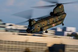 NCT310さんが、立川飛行場で撮影した陸上自衛隊 CH-47Jの航空フォト(飛行機 写真・画像)