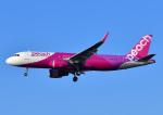 じーく。さんが、福岡空港で撮影したピーチ A320-214の航空フォト(飛行機 写真・画像)