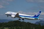 神宮寺ももさんが、高松空港で撮影した全日空 787-8 Dreamlinerの航空フォト(写真)