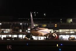 ゆう改めてさんが、熊本空港で撮影した全日空 767-381/ERの航空フォト(飛行機 写真・画像)