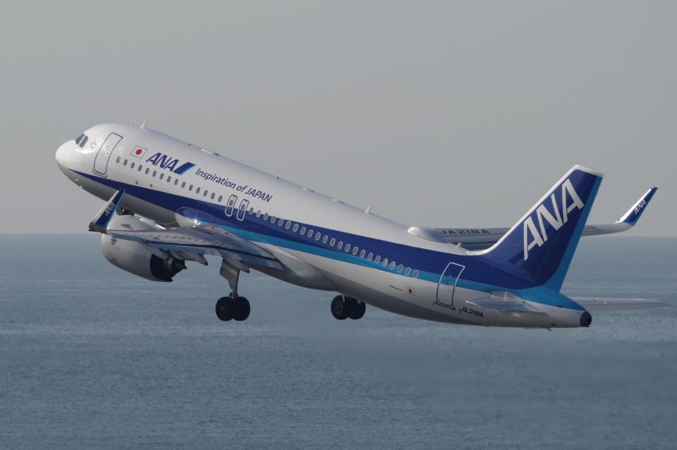 yabyanさんの全日空 Airbus A320neo (JA218A) 航空フォト