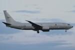 harahara555さんが、厚木飛行場で撮影したオーストラリア空軍 P-8A (737-8FV)の航空フォト(写真)