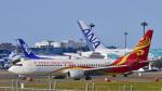 パンダさんが、成田国際空港で撮影した海南航空 737-8BKの航空フォト(飛行機 写真・画像)