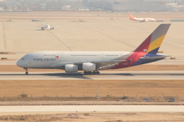 OMAさんが、仁川国際空港で撮影したアシアナ航空 A380-841の航空フォト(写真)