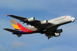 航空フォト:HL7641 アシアナ航空 A380